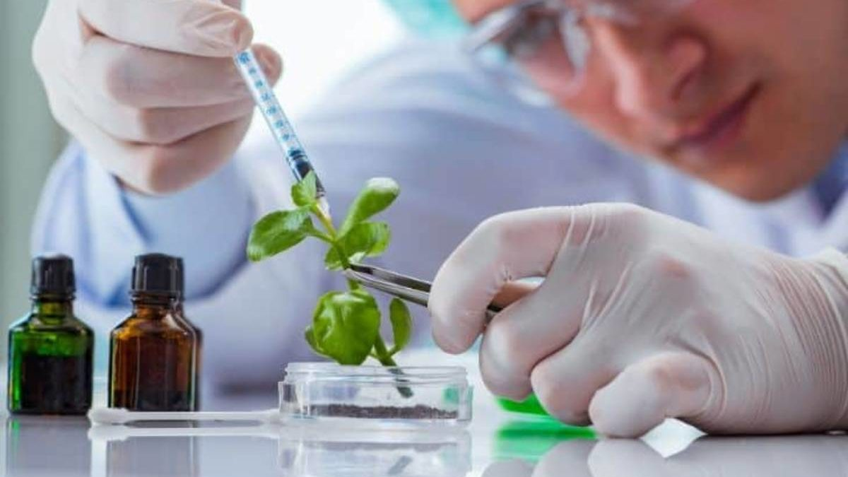What is Biotechnology? – Types, Applications, Uses, and More