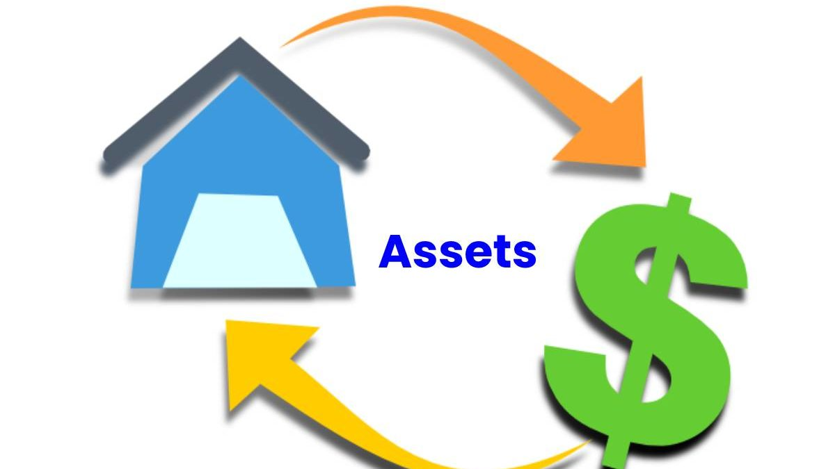 What are the Assets? – Understanding, Types, Calculation, and More