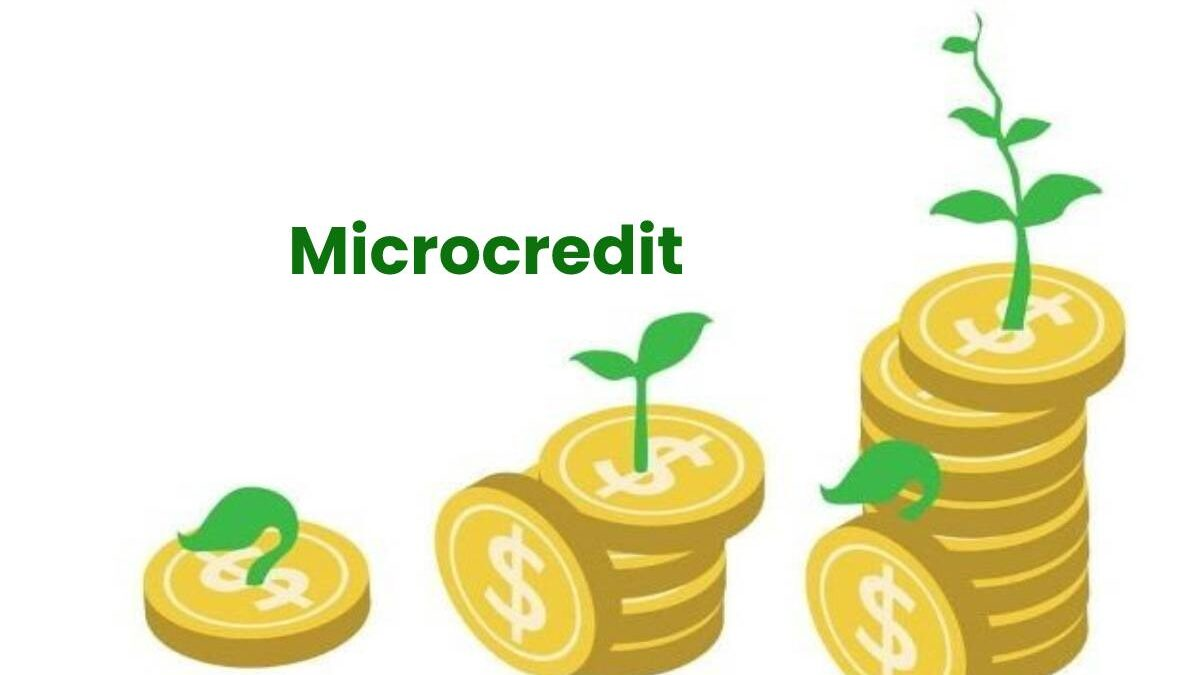 What Is Microcredit? – Works, Micro-Loan Terms, and More